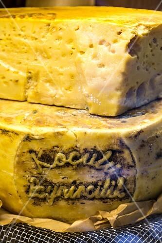 Turkish cheese