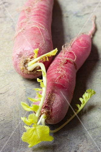 Two red radishes