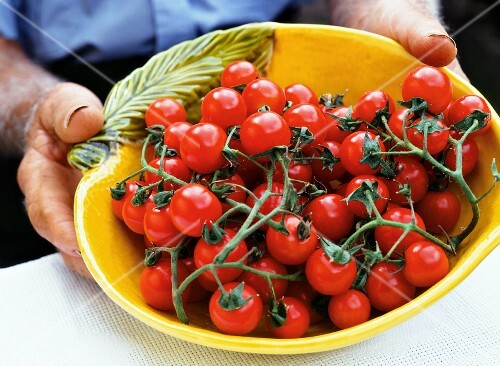 A man holding freshly harvested tomatoes in a yellow ceramic bowl