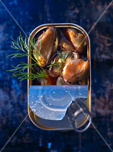 Mussels marinated with dill in a tin (seen from above)