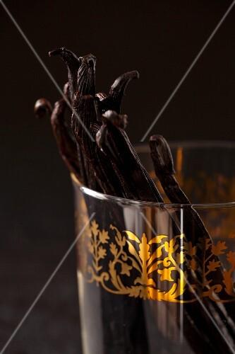 Vanilla pods in an Oriental glass