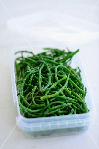 Samphire in a plastic box
