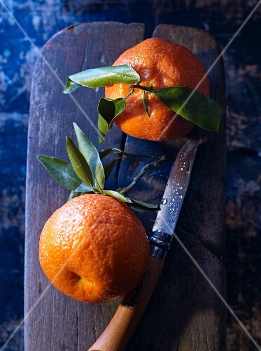 Two clementines with leaves on a chopping board with a knife