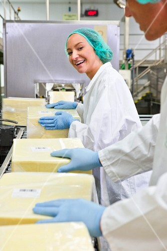 Workers on a production line in a cheese factory