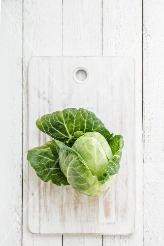 Pointed cabbage on a chopping board