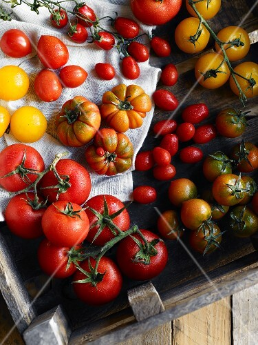 Various types of tomatoes in a wooden crate