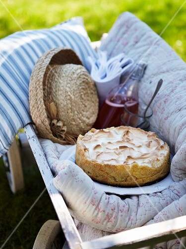 Meringue cake with rhubarb and raspberry juice on a handcart in a summer garden