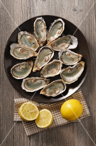 Fresh oysters and lemon