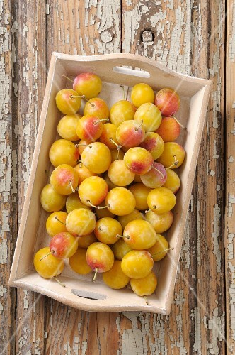 Fresh yellow plums on a wooden tray