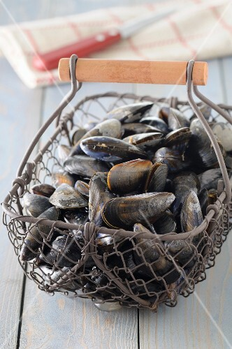 Mussels in a wire basket