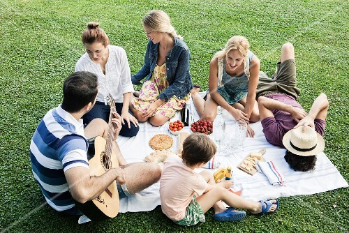 A summer picnic in a park with family and friends