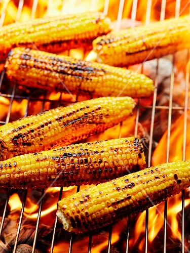 Elote, Mexican corncobs on a grill