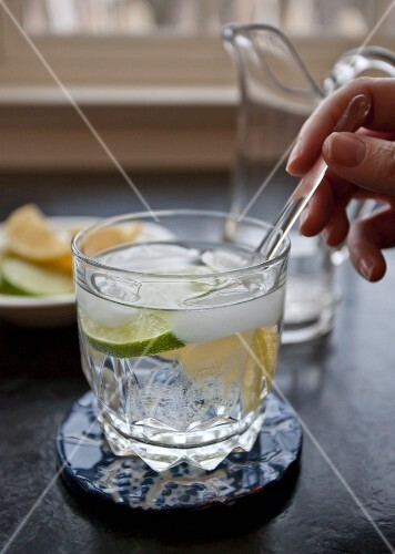 A vodka cocktail with soda water, lemon and lime slices and ice cubes