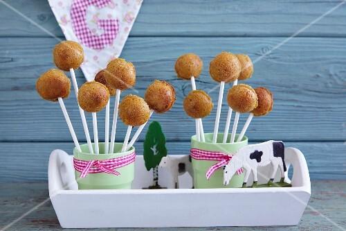 Sweet potato cake pops