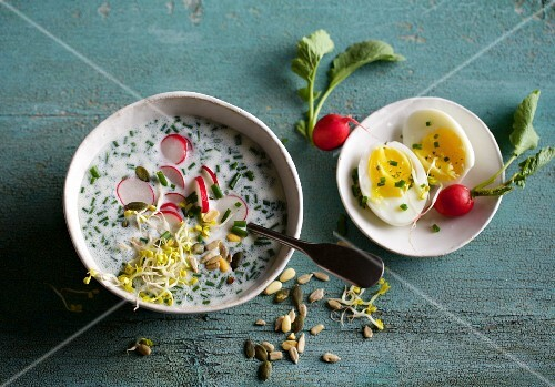 Cold buttermilk and radish soup with beansprouts and egg