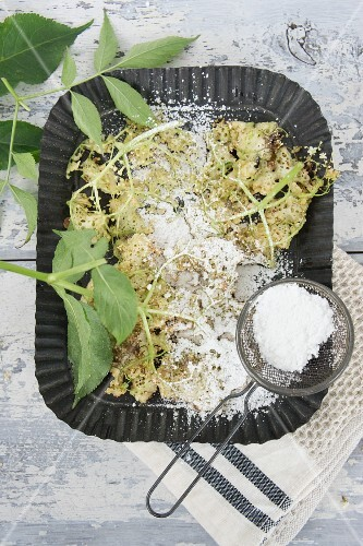 Deep-fried elderflowers with icing sugar