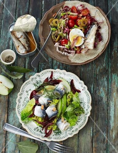 Mediterranean sardine salad and rollmop herring salad with green apples