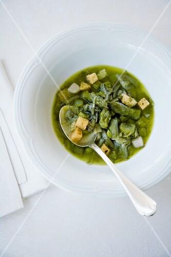 Garmuglia lucchese (Tuscan asparagus soup, Italy)