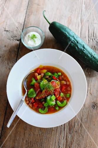 Braised cucumber stew