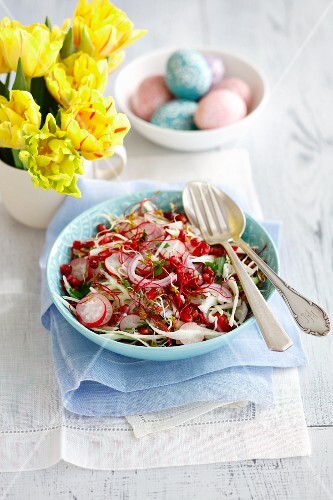 Cabbage salad with pomegranate seeds, radishes, beansprouts and red onions for Easter