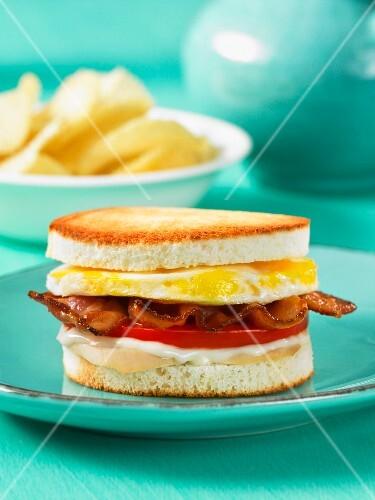 Chicken, bacon and tomato club sandwich