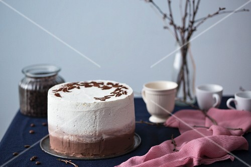 Tiramisu cake with coffee mousse and mascarpone