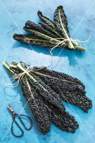 Bundles of black kale leaves