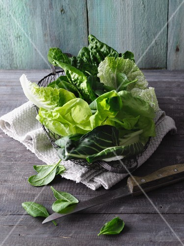 Leafy greens and lettuce for make smoothies