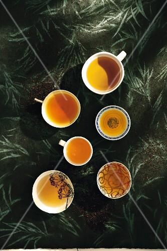 Various cups of black tea