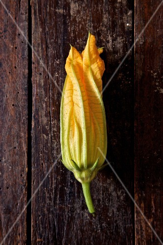 A courgette flower on a wooden table