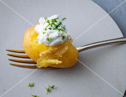 A new potato with herb quark