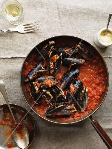 Stuffed mussels à la sétoise in tomato sauce
