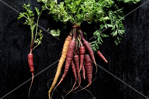 Baby carrots with leaves on a black surface