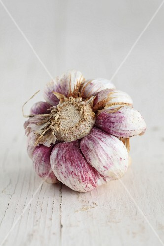 The bottom of a dried, pink and white bulb of garlic