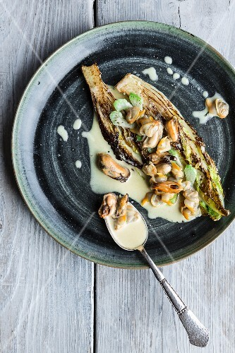 Fried lettuce with a creamy mussel sauce