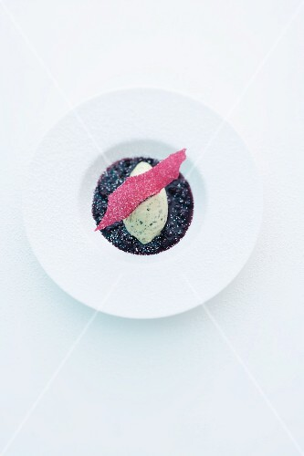 Pumpkin seed ice cream on elderberry compote