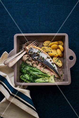 Macro with bok choy and potatoes