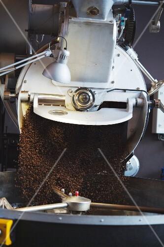 Coffee, roasting, drum, coffee roasting, Elbgold in Hamburg