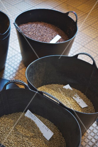 Various types of coffee beans before roasting at 'The Barn' cafe in Berlin
