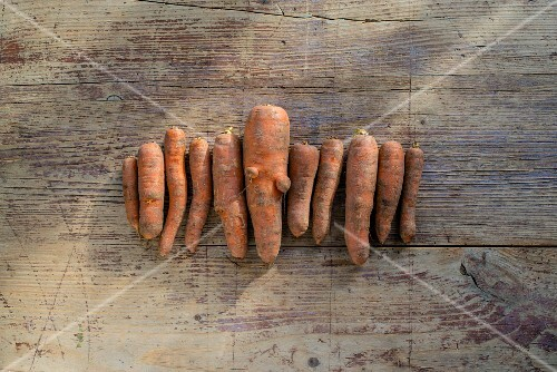 A row of organic carrots on a wooden table (seen from above)
