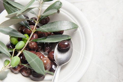 Olives in olive oil with an olive sprig