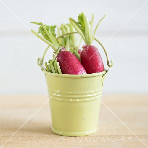 Radishes in a small metal bucket