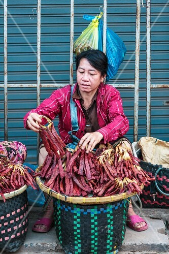 A woman selling dried fish at a market in Vientiane, Laos