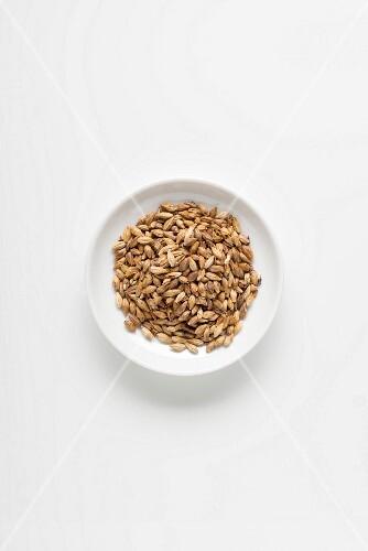A bowl of barley malt