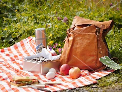 A picnic in the Bernese Oberland, Switzerland