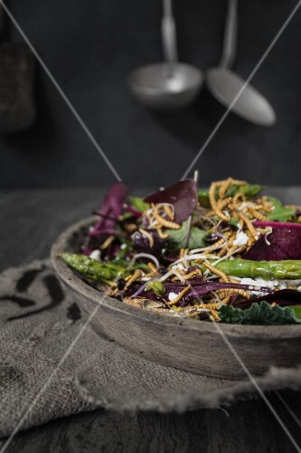 A mixed leaf salad with asparagus, goat's cheese and buffalo worms
