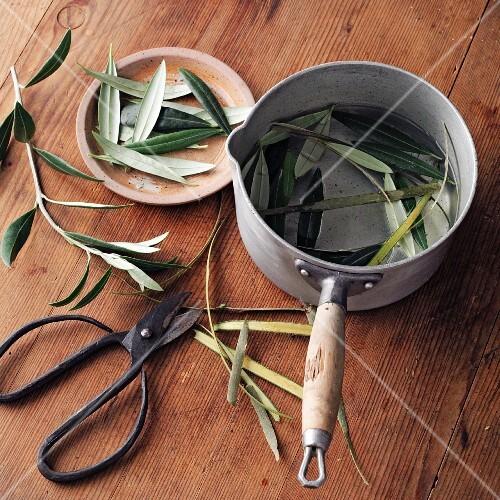 Olive salve à la Hildegard von Bingen being made