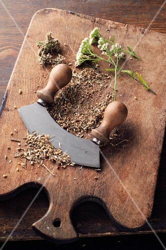 Yarrow powder à la Hildegard von Bingen being made