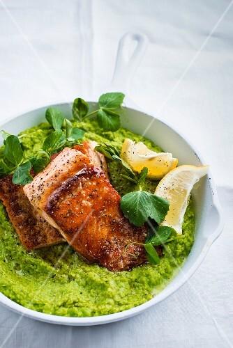 Fried salmon trout on mushy peas