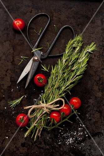 Freshly cut rosemary with cherry tomatoes, sea salt and herb scissors